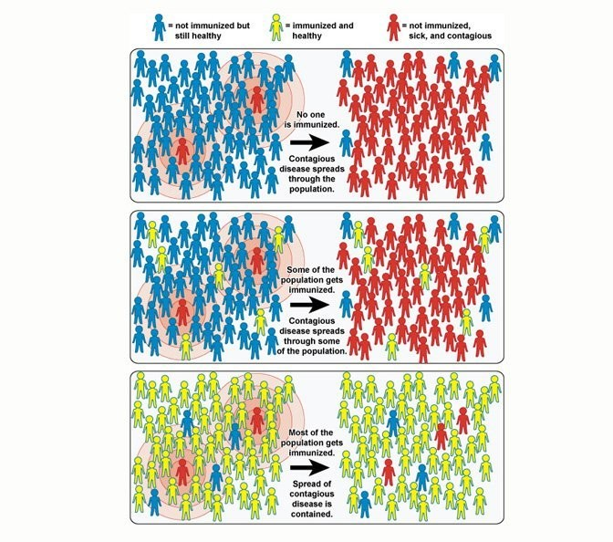 What Does Herd Immunity Mean In The Time Of Covid 19 Doctorsgate